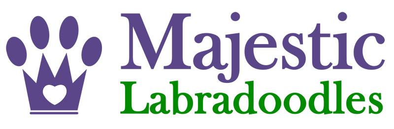 Majestic Labradoodles breeders in Winston-Salem NC